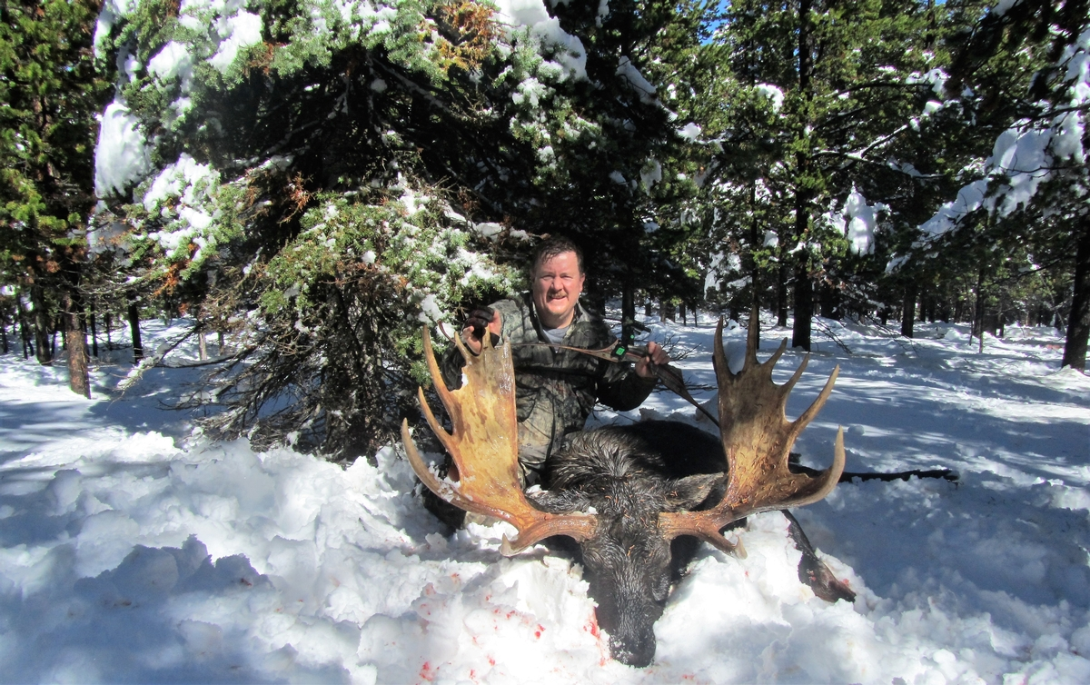 Trophy Shiras Moose Hunting Rates